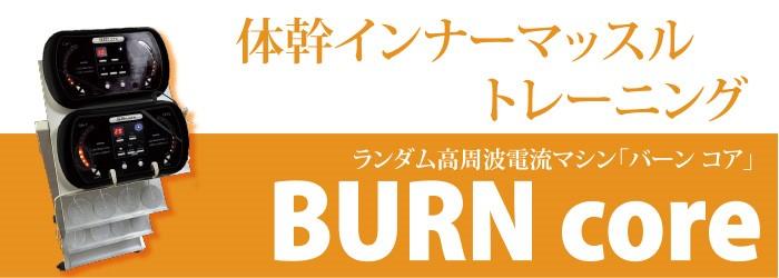BURN core